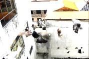 Tauben in Quito